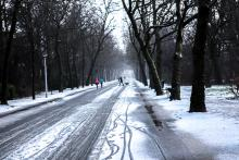 winter Vondelaprk