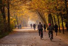 Street Photography Amsterdam autumn