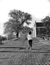 Corona Amstel