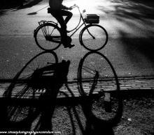 Vondelpark half bike